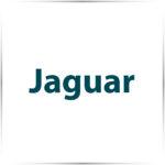 Jaguar (EI11)